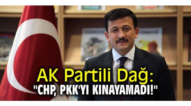 """AK Partili Dağ: """"CHP, PKK'yı kınayamadı!"""""""