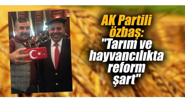 """AK Partili Özbaş, """"Tarım ve hayvancılıkta reform şart"""""""