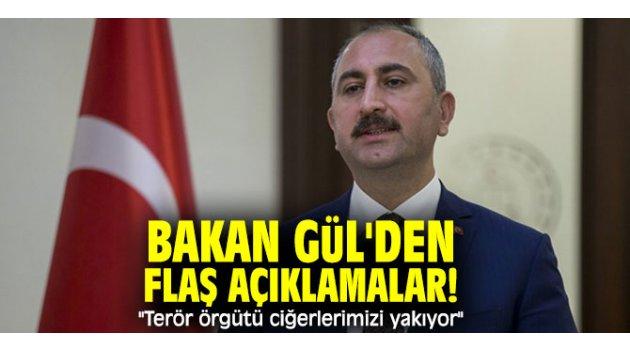 """Bakan Gül'den flaş açıklamalar! """"Terör örgütü ciğerlerimizi yakıyor"""""""