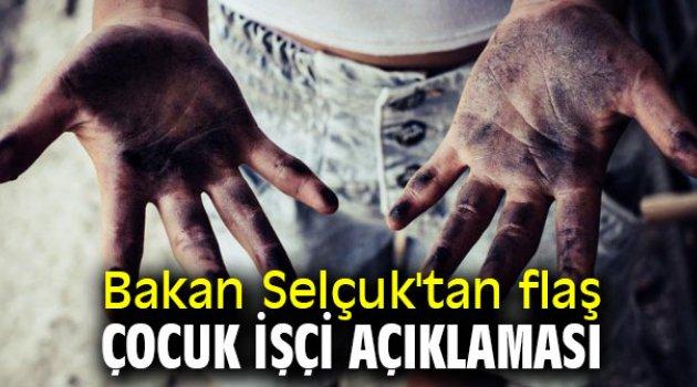 Bakan Selçuk'tan flaş çocuk işçi açıklaması