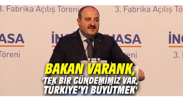 Bakan Varank, 'Tek bir gündemimiz var, Türkiye'yi büyütmek'