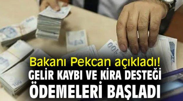 Bakanı Pekcan açıkladı! Şubat ayı gelir kaybı ve kira desteği ödemeleri başladı