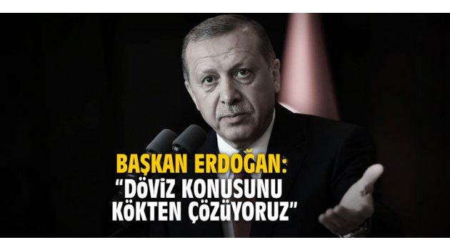 """Başkan Erdoğan: """"Döviz konusunu kökten çözüyoruz"""""""