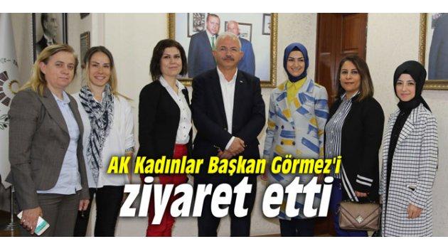 AK Kadınlar Başkan Görmez'i ziyaret etti