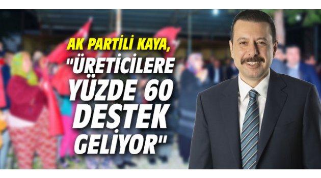 """AK Partili Kaya, """"Üreticilere yüzde 60 destek geliyor"""""""
