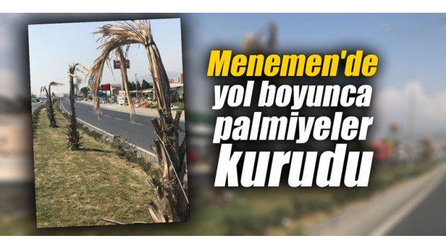 Menemen'de yol boyunca tüm palmiyeler kurudu