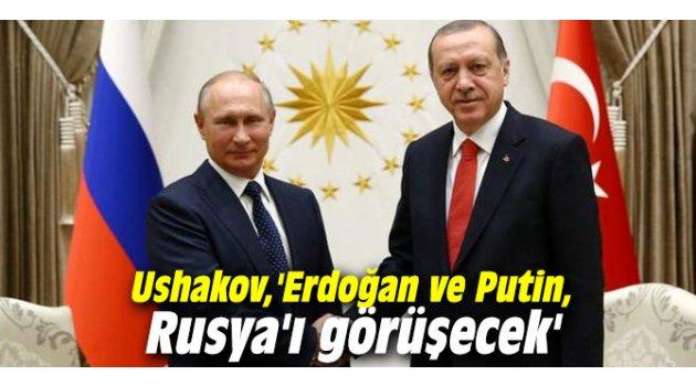 Ushakov: 'Erdoğan ve Putin, Rusya'ı görüşecek'