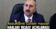 Abdulhamit Gül'den 'Hayvan hakları yasası' açıklaması