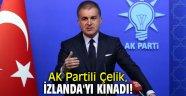 AK Partili Çelik, İzlanda'yı kınadı!