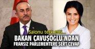 Bakan Çavuşoğlu'ndan, Fransız parlamentere sert cevap