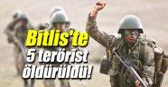 Bitlis'te 5 terörist öldürüldü!
