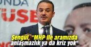 """Şengül, """"MHP ile aramızda anlaşmazlık ya da kriz yok"""""""