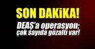 Son dakika! DEAŞ'a operasyon! Çok sayıda gözaltı var!