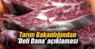 Tarım Bakanlığından 'Deli Dana' açıklaması
