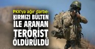 Terör örgütü PKK'ya ağır darbe: Kırmızı bülten ile aranan terörist öldürüldü