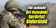 TSK açıkladı! Gri listedeki terörist öldürüldü